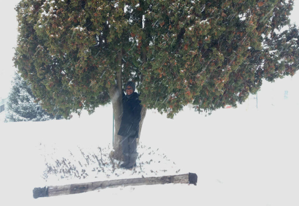 Here I am nestled in a tree enjoying the freshly falling snow.
